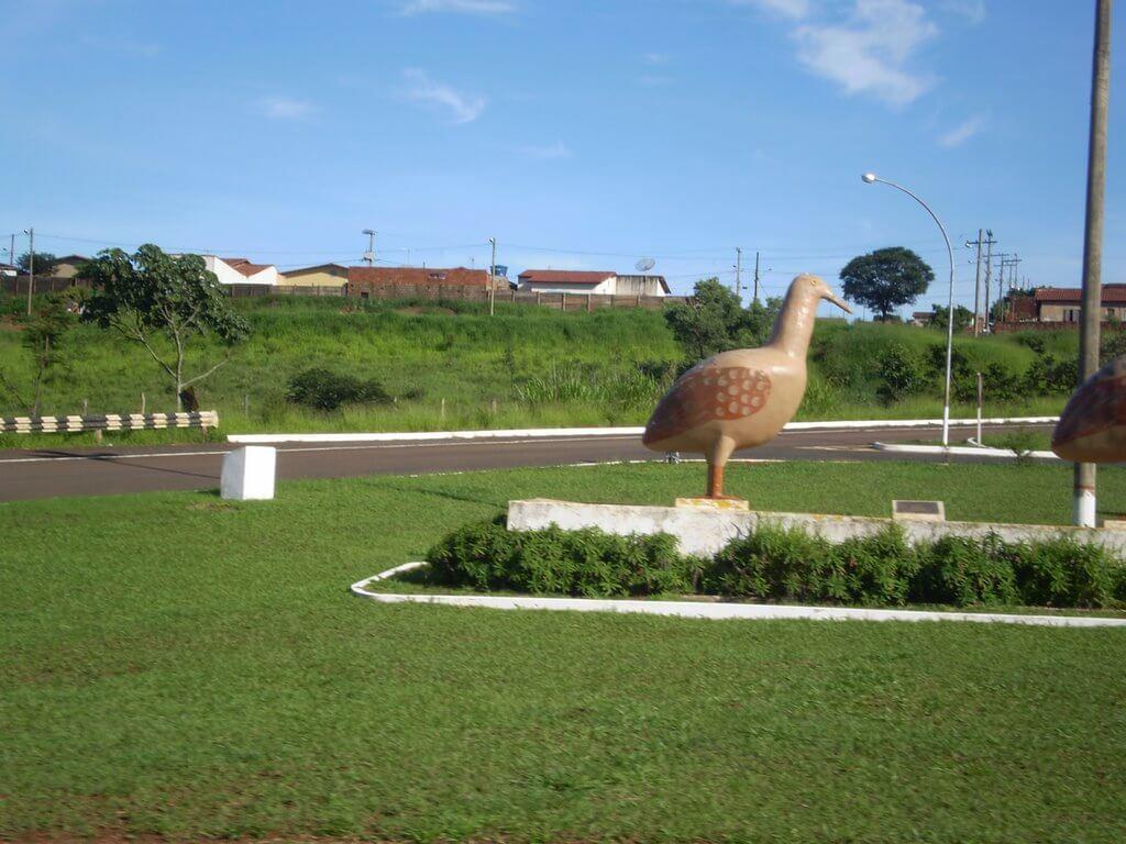 Perdizes Minas Gerais fonte: static.consolidesuamarca.com.br