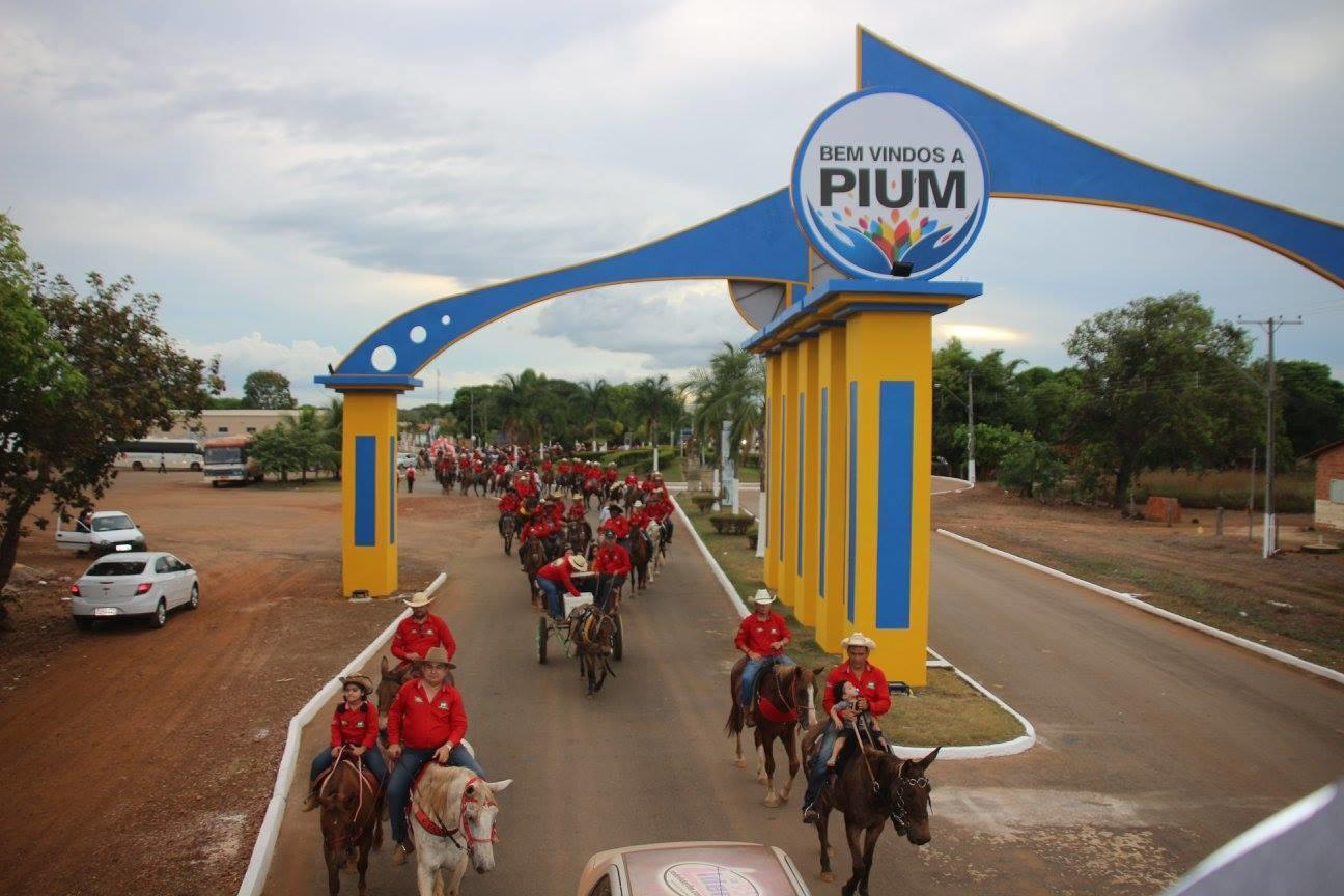 Pium Tocantins fonte: static.consolidesuamarca.com.br