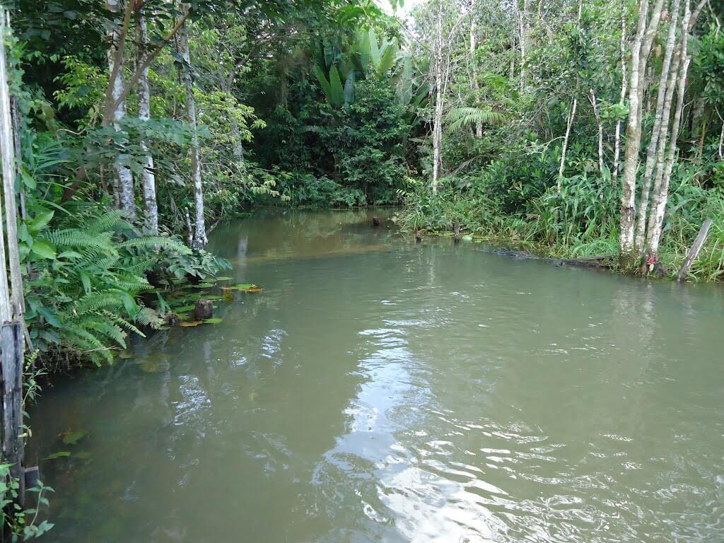 Santo Antônio do Tauá Pará fonte: static.consolidesuamarca.com.br